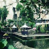 азиатские сады Стоковое Изображение RF