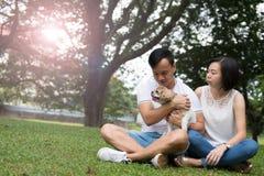 Азиатские симпатичные пары с собакой tzu shih стоковая фотография rf