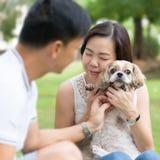 Азиатские симпатичные пары с собакой tzu shih стоковая фотография