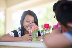 Азиатские студенты и учат scicence биологии исследования в внешнем классе Стоковые Изображения RF