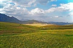 Азиатский ландшафт - степь, скотины и горы Памира Стоковые Фотографии RF