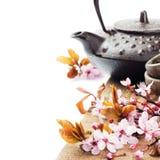 Азиатский бак чая с вишневым цветом Стоковое Изображение RF