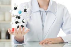 Азиатский женский пункт учителя ученого на молекулярной модели объясняет Стоковые Изображения