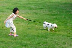 азиатский играть малыша собаки Стоковое Изображение
