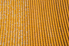 Азиатский китаец, Пекин, застекленная плитка Стоковое Фото