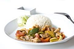 Азиатский комплект обедающего риса мяса Стоковое Изображение RF