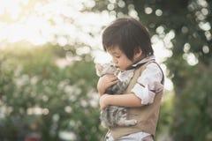 Азиатский мальчик держа американского котенка коротких волос Стоковые Фотографии RF