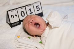 Азиатский младенец новорожденного зевая стоковые изображения rf