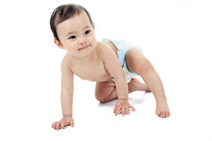 Азиатский младенец на предпосылке белизны студии Стоковые Изображения RF