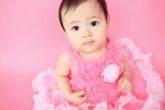 Азиатский младенец на предпосылке пинка студии Стоковая Фотография RF