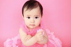 Азиатский младенец на предпосылке пинка студии Стоковые Фото