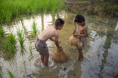 Азиатский рыболов детей стоковая фотография