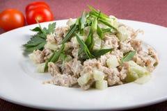 Азиатский салат из курицы огурца Стоковая Фотография RF