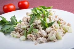 Азиатский салат из курицы огурца Стоковое Фото