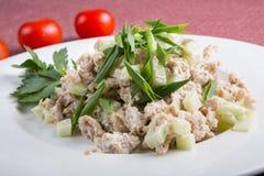 Азиатский салат из курицы огурца Стоковое Изображение