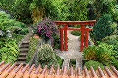 Азиатский сад Стоковое Изображение RF