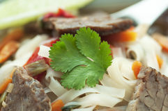 азиатский суп говядины Стоковые Изображения RF