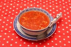 азиатский суп Стоковая Фотография