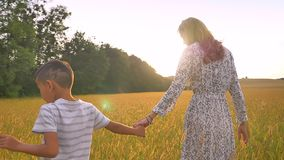 Азиатский сын и его милая мать идя вперед на желтое поле нежно держа их руки сток-видео