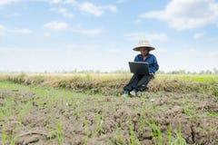 Азиатский тайский фермер используя портативный компьютер в поле риса Стоковые Фотографии RF