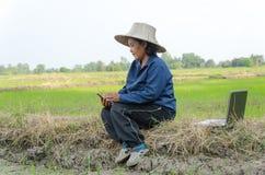 Азиатский тайский фермер используя портативный компьютер smartphone в рисе f Стоковое Фото
