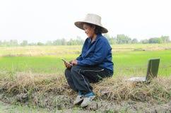 Азиатский тайский фермер используя smartphone и портативный компьютер в ri Стоковые Фото