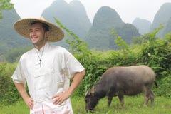 Азиатский фермер с волом стоковые фото