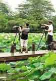 азиатский фотографировать людей Стоковое Изображение RF