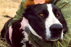 азиатский центральный чабан собаки hugs Хорошая большая собака друг стоковые изображения