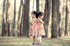 2 азиатских маленькой девочки обнимают их комод Стоковая Фотография
