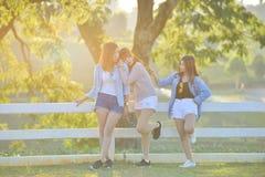 3 азиатских молодых ladys наслаждаются жарой после полудня в саде Стоковое Фото