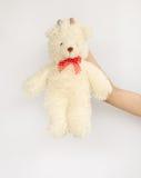 Азиатское предназначенное для подростков удерживание кукла медведя Стоковая Фотография