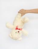 Азиатское предназначенное для подростков удерживание кукла медведя Стоковые Изображения