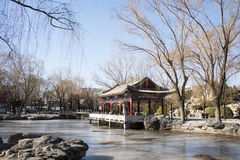 Азиат Китай, Пекин, парк Ritan Стоковое Фото