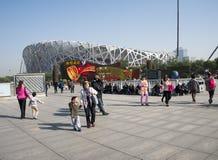 Азиат Китай, Пекин, современная архитектура, гнездо птицы, национальный стадион, фестиваль Стоковая Фотография