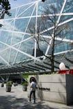 Азиат Китай, Пекин, современная архитектура, трава qiaofu душистая Стоковое фото RF