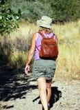 азиат укладывая рюкзак красивейший женский hiker hiking детеныши вулкана tenerife teide Испании ландшафта модельные сценарные оче Стоковое Изображение