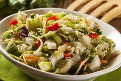 Азиат Bok Choy и салат рамэнов Стоковая Фотография