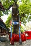 Азия Китай, Пекин, висок dongyue, ландшафтная архитектура, старое дерево пагоды Стоковое фото RF