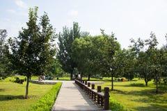 Азия Китай, Пекин, олимпийский Forest Park, след ŒWooden ¼ architectureï ландшафта Стоковое фото RF