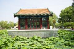 Азия Китай, Пекин, парк озера Longtan, ландшафт лета, павильон, зеленый пруд лотоса Стоковое Изображение