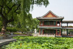 Азия Китай, Пекин, парк озера Longtan, ландшафт лета, павильон, зеленый пруд лотоса Стоковые Фотографии RF