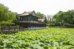 Азия Китай, Пекин, парк озера Longtan, ландшафт лета, павильон, зеленый пруд лотоса Стоковые Изображения RF