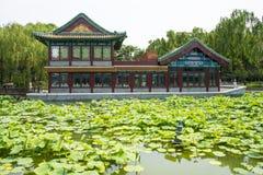 Азия Китай, Пекин, парк озера Longtan, ландшафт лета, павильон, зеленый пруд лотоса Стоковое Изображение RF