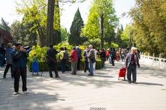 Азия Китай, Пекин, парк холма Jingshan, фестиваль ŒPeony ¼ landscapeï сада весны Стоковое фото RF