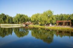 Азия Китай, Пекин, парк Guta, вид на озеро, деревянный мост, деревянный павильон Стоковое Изображение