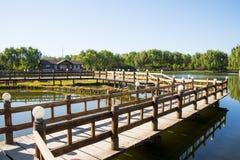 Азия Китай, Пекин, парк Guta, деревянный мост, деревянный дом Стоковые Изображения RF