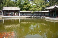 Азия Китай, Пекин, душистый парк холма, видит Shinsaibashi, двор сада стиля Jiangnan Стоковая Фотография