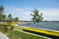 Азия Китай, Wuqing, живописная местность Тяньцзиня, зеленая озера ŒSouth ¼ Expoï, пейзаж берега стоковые фото