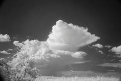 Азия baikal заволакивает взгляд грозы России olkhon озера острова Стоковые Изображения RF
